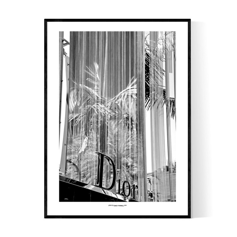 Beverly Dior Poster