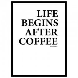 Life Begins Poster