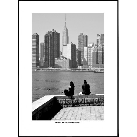 East River NYC Poster