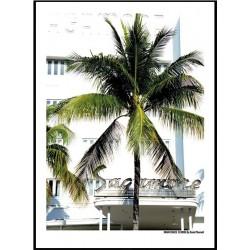 Sagamore Miami Beach Print