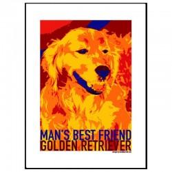Golden Retriever Poster