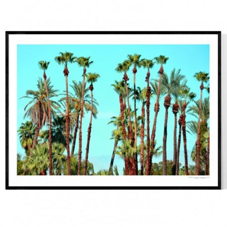 Palms Heaven Poster