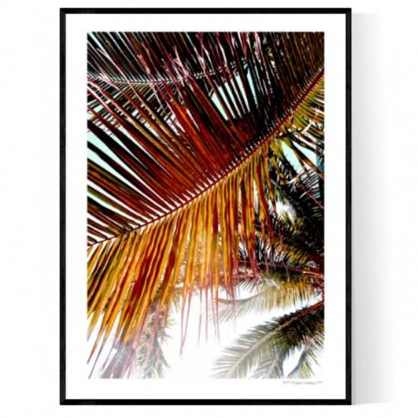 Brickell Palms