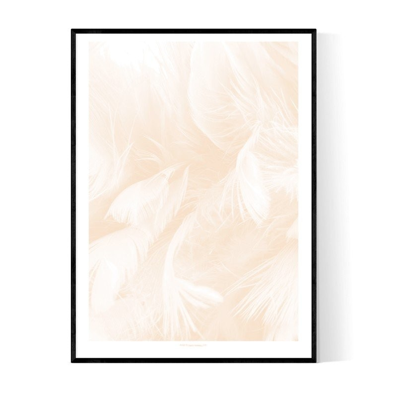 Abstract Peach Feather