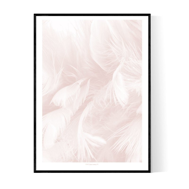 Abstract Pink Feathers